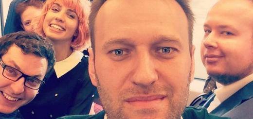 Навальный Толокно Оппозиция