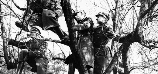 Члены движения «Гитлерюгенд». Фотография Франца Рота. 20 февраля 1938 г. Фото: AP/ТАСС