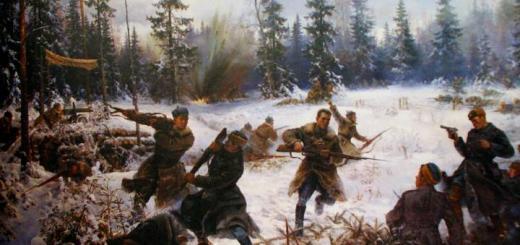 С чего началась война с финнами