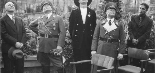 Геринг и Мильх - в форме