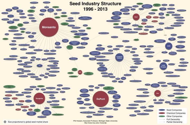 Структура мировой индустрии производства семян. Автор схемы: Philip H. Howard, Associate Professor, Michigan State University