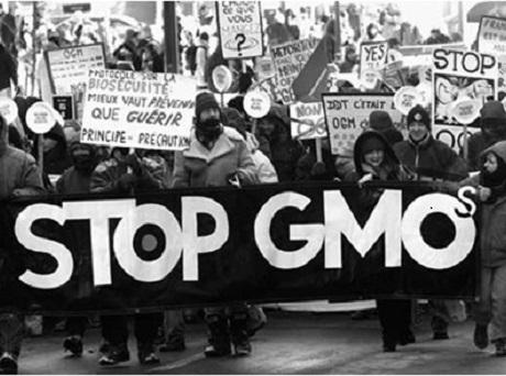 Протестующие против ГМО во Франции.