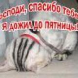 Gera_sim